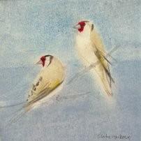 Claire Harkess RSW Goldfinch ii